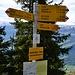 Passhöhe Nideri: ostwärts auf den Höchst, südlicher Abstieg nach Lüsis oder nördlicher Abstieg und wieder Aufstieg zum Sattel (weiter zu Gamser- oder Chäserrugg)