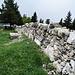weitere Mauern