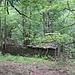 Alpe Vaccarisc gehört wieder dem Wald