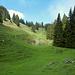 Über die Obere Sattel Alpe leiten die Markierungen hinauf zur Wegverzweigung.