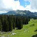 Wieder zurück bei der Wegverzweigung, mit Blick auf die Obere Sattel Alpe und den wolkenumhüllten Diedamskopf.