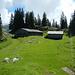 Ab der Oberen Sattel Alpe wandert man über einen Alpweg hinab zum Stogger Sattel.