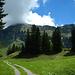 Am Weg hinunter zur Sattelegg Alpe. Der Gipfel des Diedamskopfs verweigert sich weiterhin.