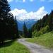 Am Weg vom Stogger Sattel hinab zum Rehmer Bach hätte man einen tollen Blick zum Zitterklapfen, wenn dieser sich nicht - so wie heute - in Wolken hüllt ...