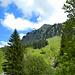 Bei Überquerung des Rehmer Bachs, war dann der Blick zum Diedamskopf wieder frei.