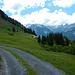 Almwiesen bei der Unteren Stoggen Alpe.