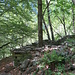 Cassinello...der stattliche Baum zeigt, dass die Hütte schon lange verlassen wurde