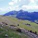 Blick hinunter auf die Alp Sigel, beim Abstieg vom Gipfel. Hinten der Hohe Kasten (Antenne) und der Kamor.