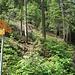 Der Weg nach rechts führt über leichte Wege nach Graitery.