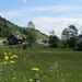 los geht's in Oberstaufen Hündle mit Blick nach Knechtenhofen