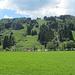 Blechlawine und Rodelbahn bei der Alpsee Bergwelt
