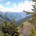 Blick in den Bregenzerwald...