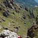 Il sentiero della direttissima collega la selletta alla cima del Grona