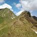 Rückblick zum Hochstarzel. Wir sind vom Gipfel die steile Grasflanke direkt nach Osten abgestiegen.
