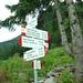 in Alpe Nugno