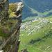 Blick vom Spalihorn auf die Lauchernalp