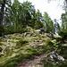 Aufstieg zur Völseggspitze