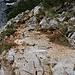 Sobald es etwas ausgesetzter ist oder Absturzgefahr droht, ist der Aufstieg zum Maglić mit Drahtseilen gesichert.