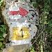 Rotweissrot: ein Unikat im Aargau, nur an der Lägern.