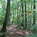 Die Mitte des Lägernsattels, wo man vom Häuli hoch kommt, mit Wegweiser.