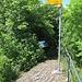 Burghorn: der höchste Punkt der Lägern auf Aargauer Boden.
