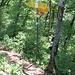 Wegweiser zwischen Burghorn und Hochwacht, hier kommt man von Boppelsen hoch.
