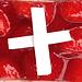 Feines zum Zvieri - Erdbeerkuchen Swiss Made