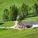 Obere Falzalpe, uriger Bauernhof mit Käseverauf und Bewirtung