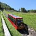 ein kurzes Stück führt der Weg auf Treppenstufen der Drahtseilbahn entlang