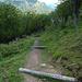 gegen Erosion geschützter Abstieg - Vorsicht Stolpergefahr :-)<br />