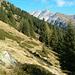 Wiesengelände beim Kirchberg 1850m