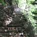 Un tratto delle scalinate sistemate nel 2013.