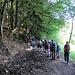 wir erreichen den sonnenschützenden Wald