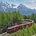 Die Berninabahn unterwegs von Cavaglia nach Alp Grüm
