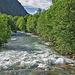 Der Fluss Poschiavino