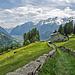 Abstieg von Cavaglia nach Poschiavo