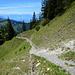 Am Weg hinunter zur Achrain Alpe. Im Oberen Teil ist der Steig noch gut erhalten.