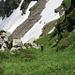 [u Omega3] im steilen Coulior vom Val d'Afata hinauf zum Nordgrat