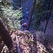 Klettern in den unteren Aufschwüngen der Habrütispitz Ostwand