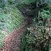 der letzte steile und etwas rutschige Abstieg