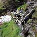 ..Siam saliti con l'intento di raggiunger la bocchetta Erbea e poi cima Dell'Uomo, una frana ha portato via l'unico sentiero percorribile da qs. versante.