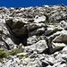Dunja (just in der Mitte zuoberst, ggf. bitte Rastermikroskop beiziehen - oder für eine Vergrösserung zuerst mal auf dieses Foto klicken) war wieder mal zuerst auf dem Gipfel. Mir steht die Kraxelpartie durch diese Felsen noch bevor.