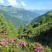Blick nach Norden im Val d`Anniviers