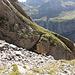 Steckenberg: Zugang zur Südseite - die Scharte in der Bildmitte