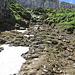 im Aufstieg zum Chäserrugg. auch wenn es nach einem Rutsch aussieht, es führt ein guter Weg mit einigen Stufen hindurch