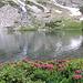 Lago Paione