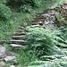 schon wieder eine Treppe