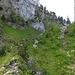 """Hier geht's den erkennbaren Weg bis zu dem Fels""""fuss"""", dann rechts schräg rüber zum Schuttfeld, dieses hoch und wieder rechts aus dem Bild raus. Alles weniger steil und schwierig, als es von hier aussieht. Wenn es trocken ist..."""