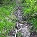 das lange Seil, steiler als es hier aussieht