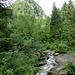 hier kommt die Rierna aus dem gleichnamigen Tal, der Wasserfall ist bestenfalls zu erahnen